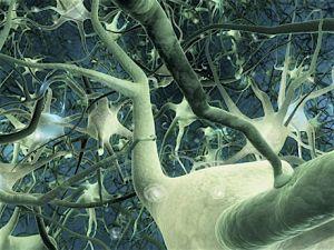 нейронный сети