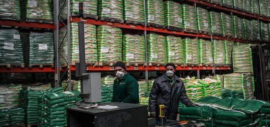 На одном из предприятий агрохолдинга «Кубань»